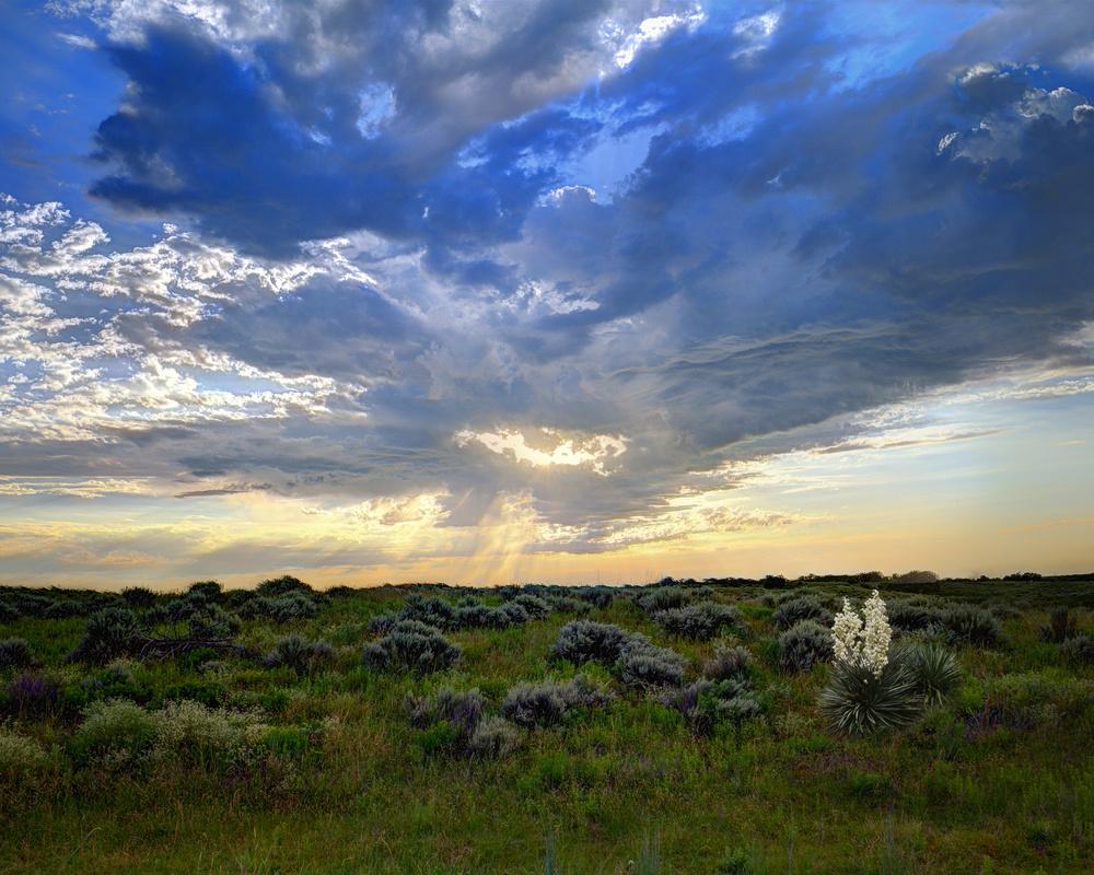 Oklahoma Morning by Skip Braun