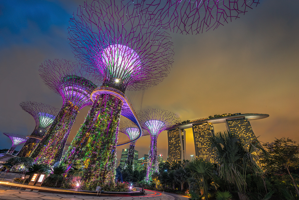 Garden By The Bay by Hertz Ong