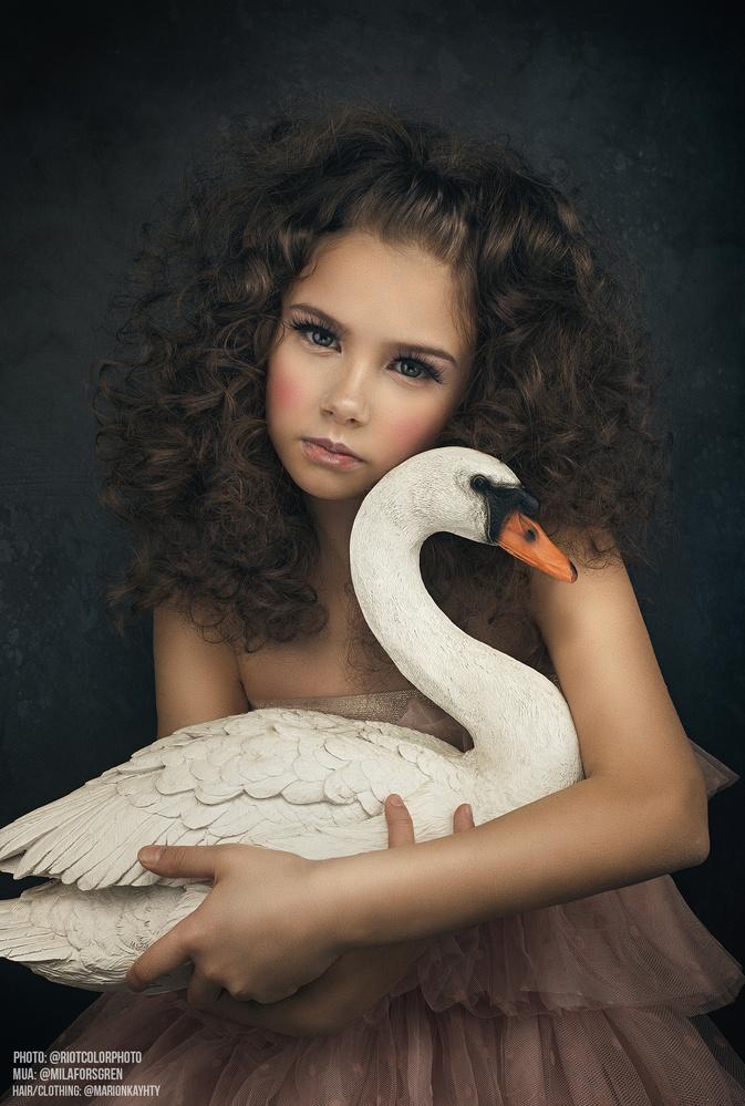 Swan by Heikki M