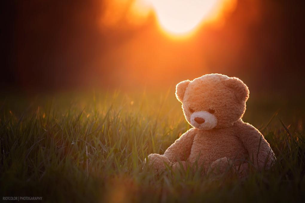 Sad bear by Heikki M