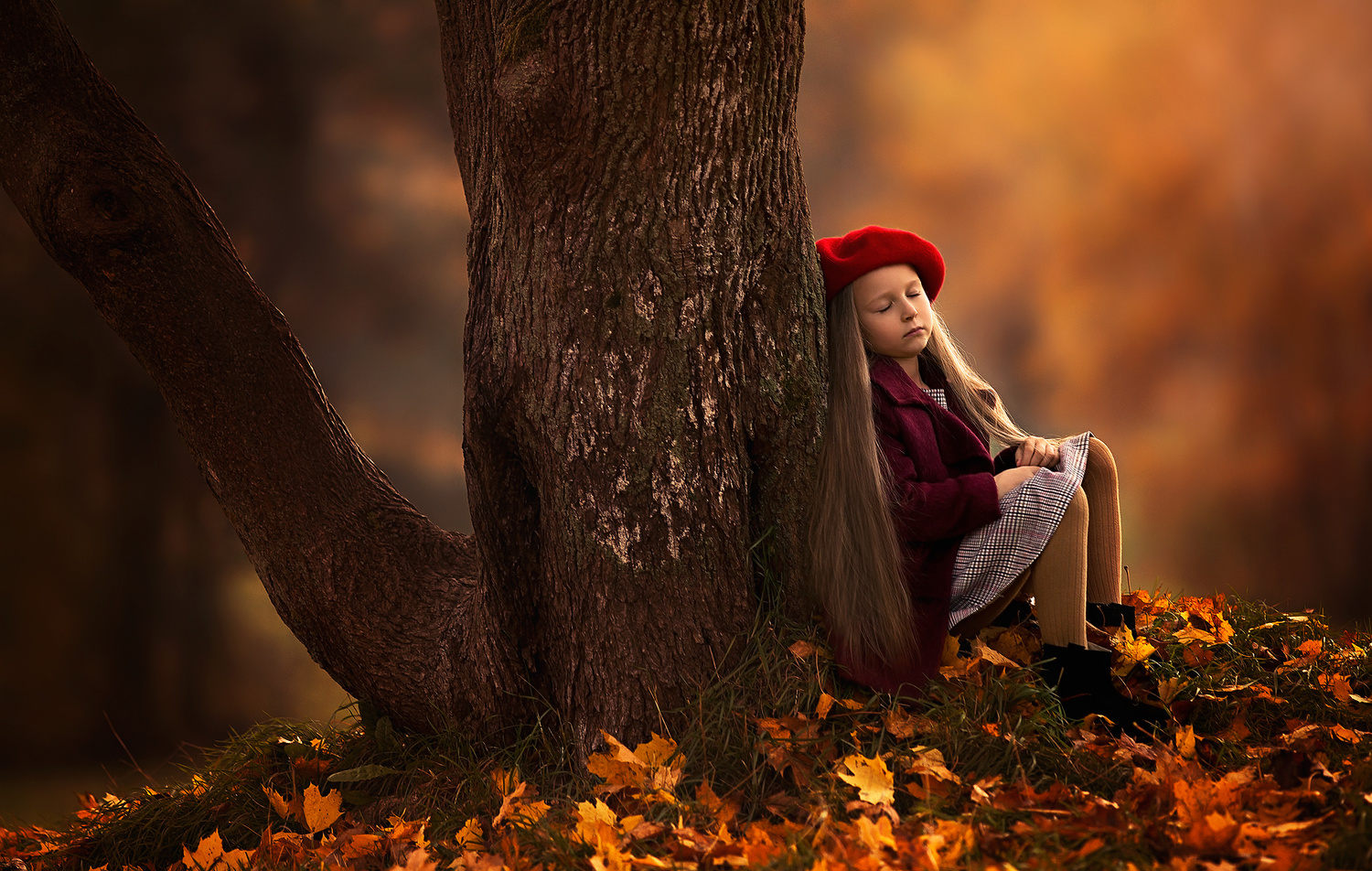 Fall colors by Heikki M