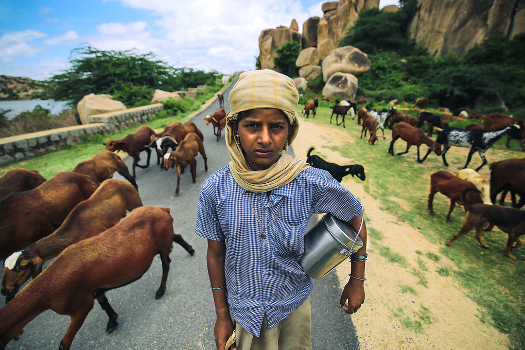 The Herdswoman by Sanket Khuntale