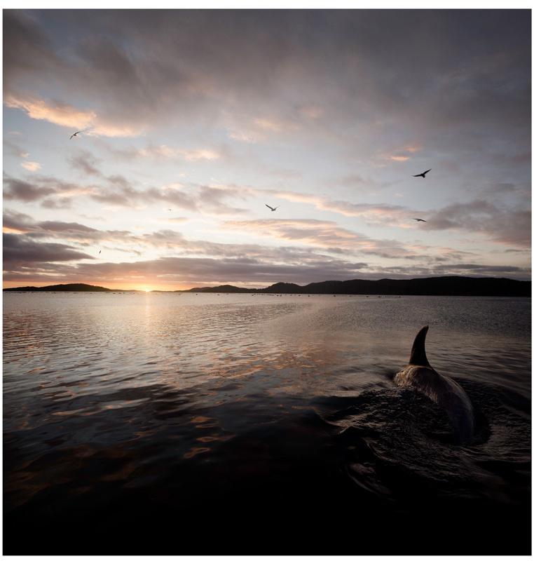 Landscape 01 by Nic Staveley