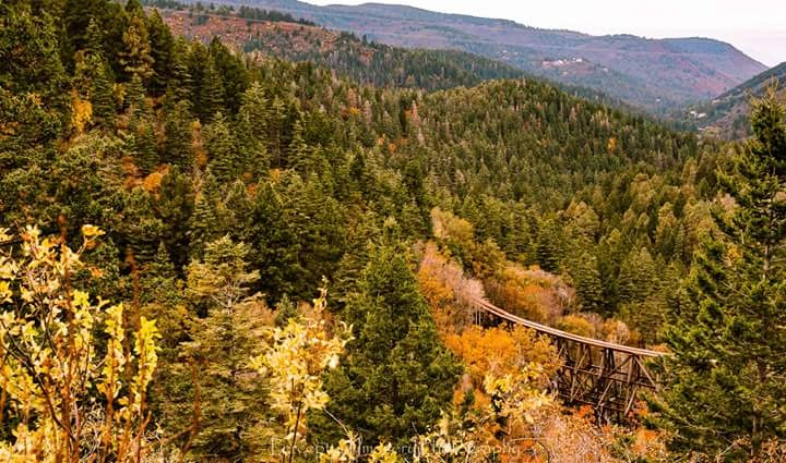 Cloudcroft NM. by J. Albert Andrade