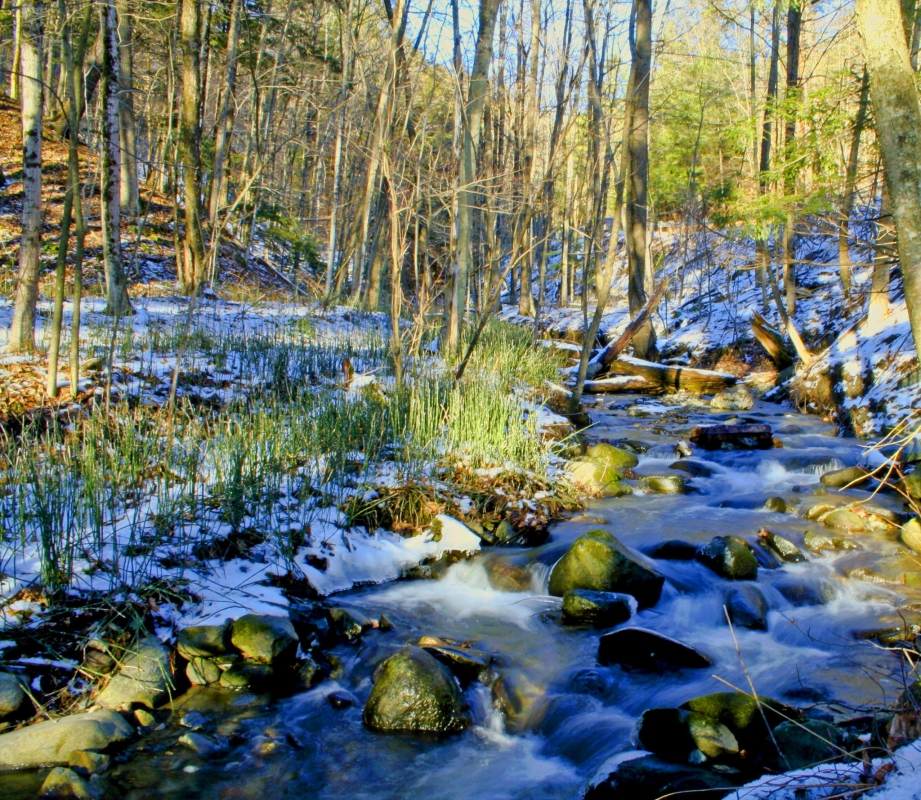 New England Stream by John Hughes
