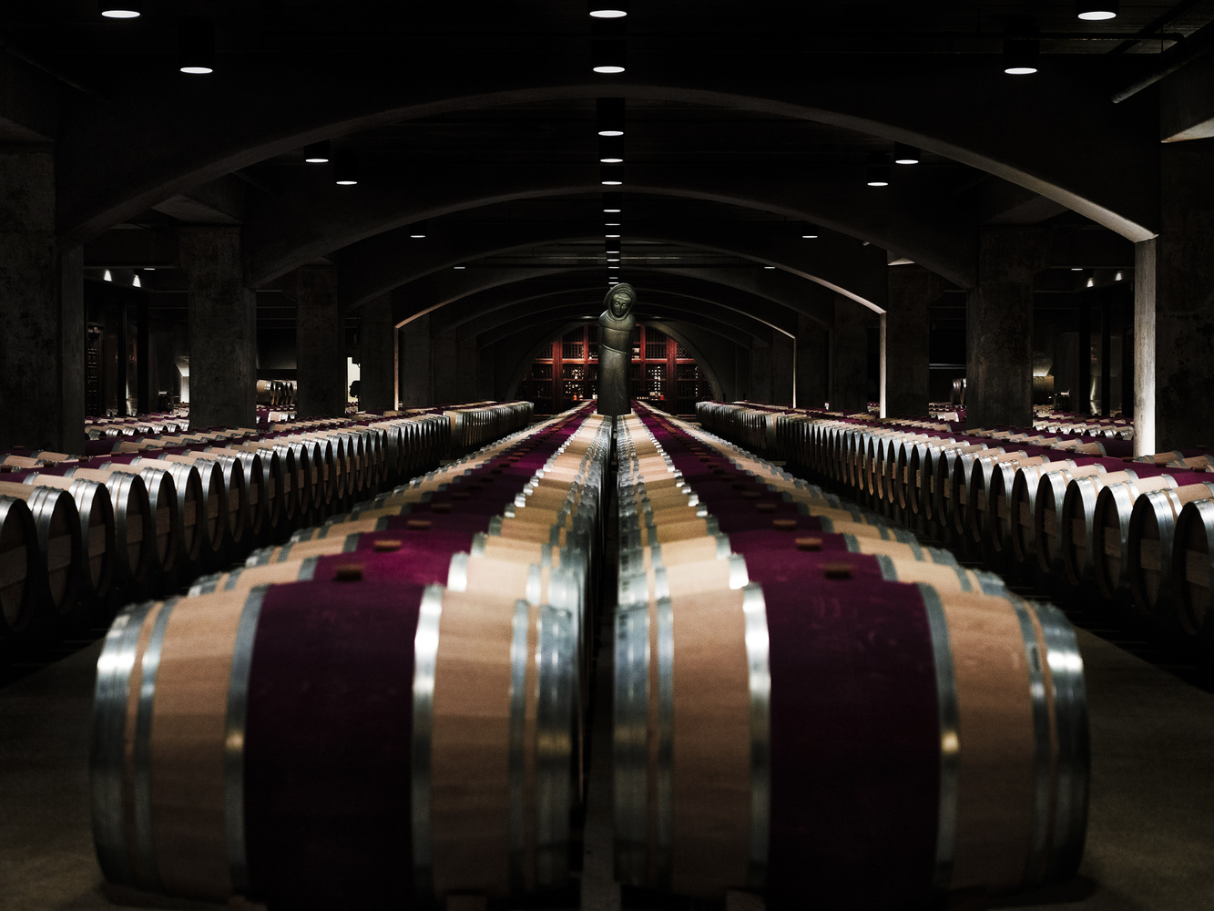 Mondavi Vineyards by Trey Amick