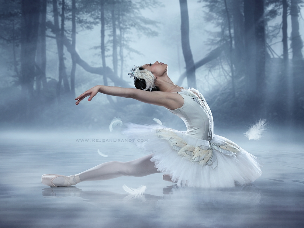 Swan Lake by Réjean Brandt