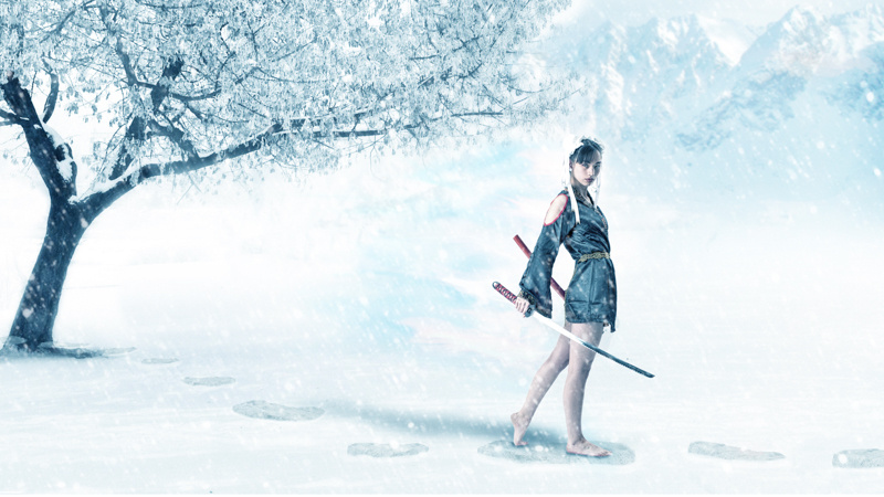 Winter Warrior by Tom Di Maggio