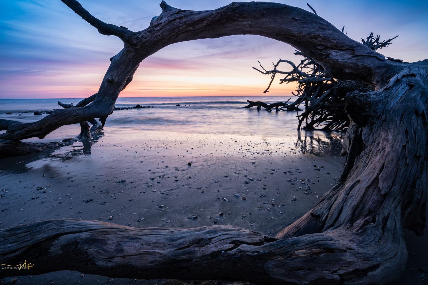 Dead frame by James Dinsmoor