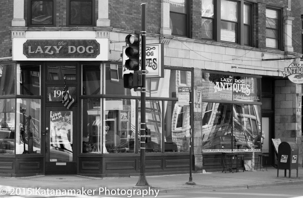 The Lazy Dog Antique Shop by Allen Walker