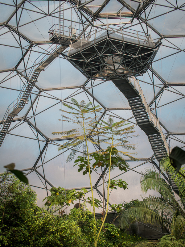 Eden Project by Tom Holloway