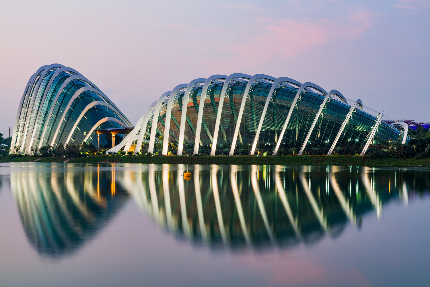 Gardens by the Bay by Jonathan Reid