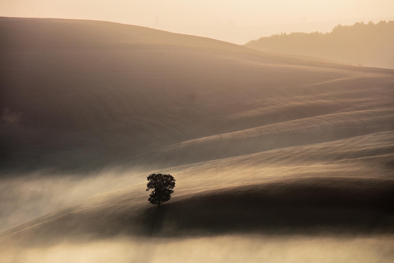 Tuscan Atmosphere by Jonathan Reid