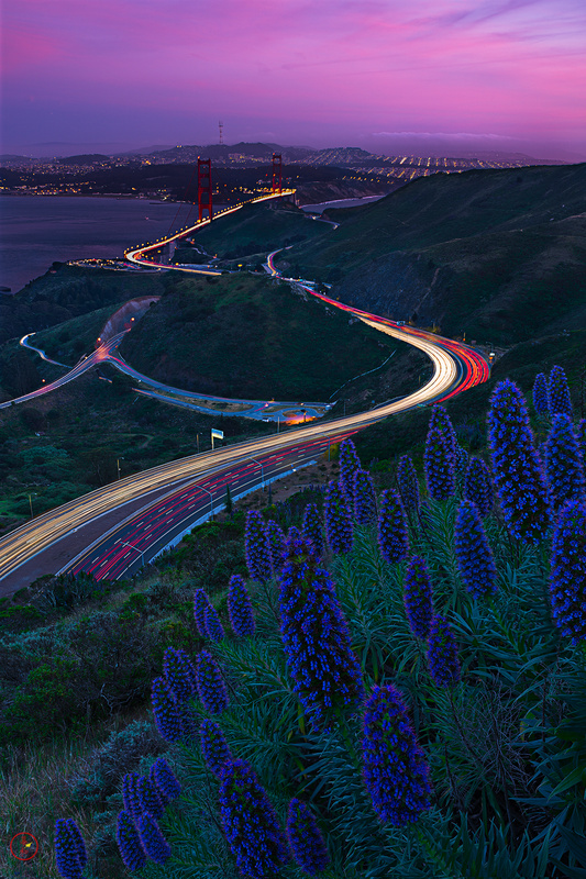 Twisty Roads by Gerald Macua