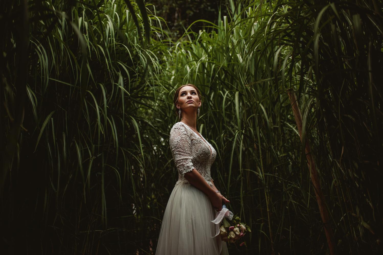 In the tall grass by Dariusz G