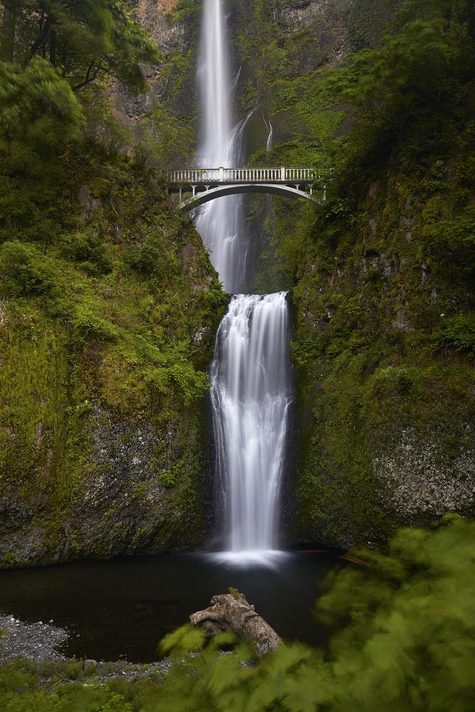 Multnomah Falls by Mirza Hasanefendic