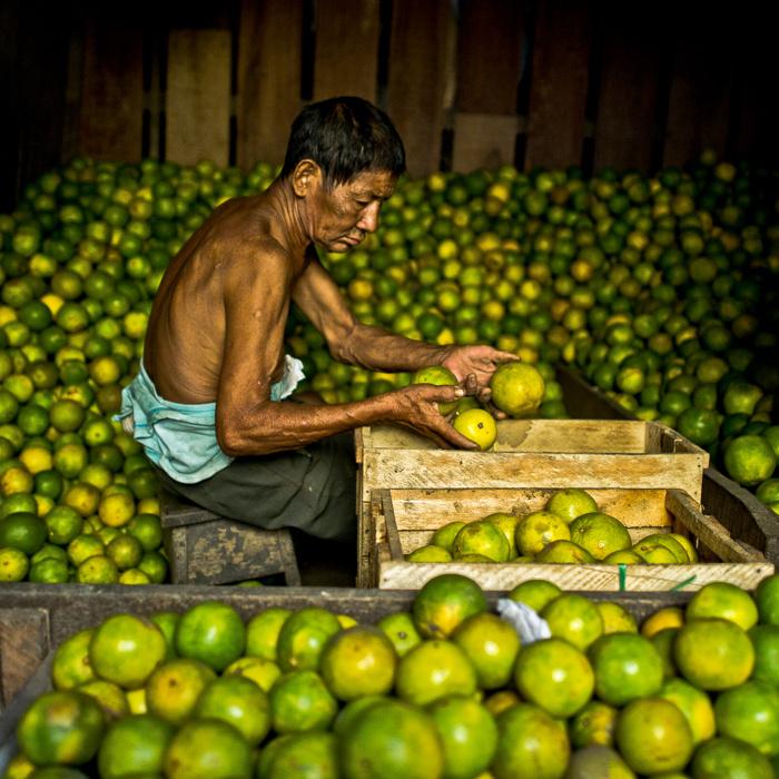 The Orange Seller - Amazon by Carey Nash