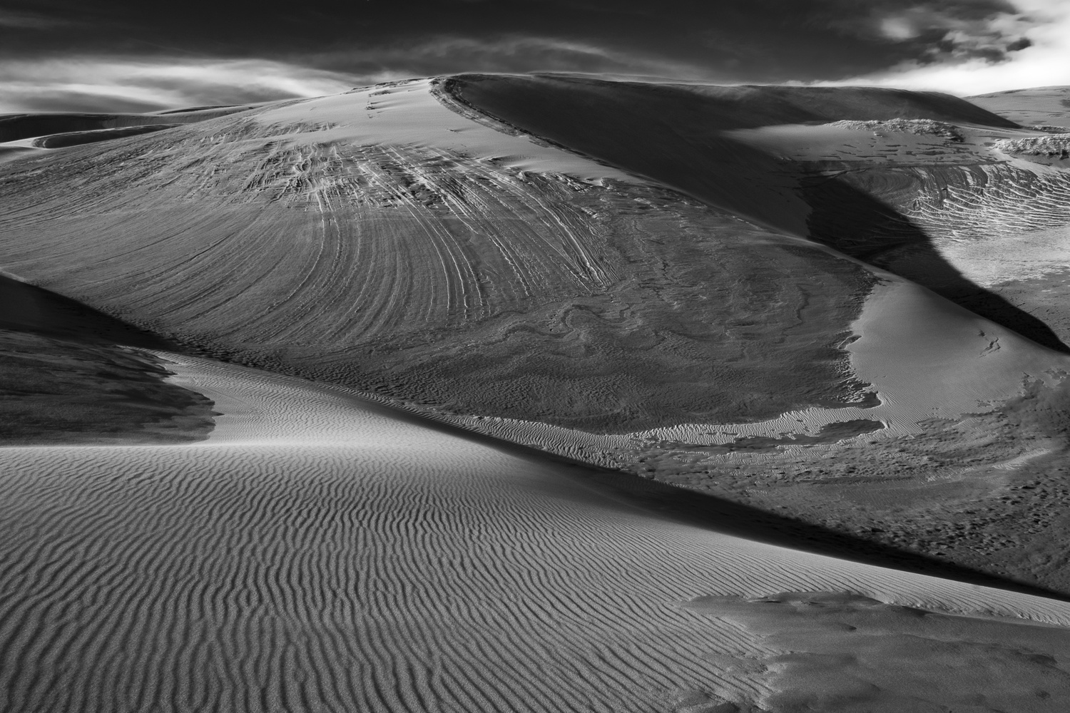 Dunes, 1 by Moishe Lettvin