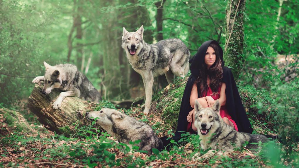 Little Red & Wolf by Jason Dream