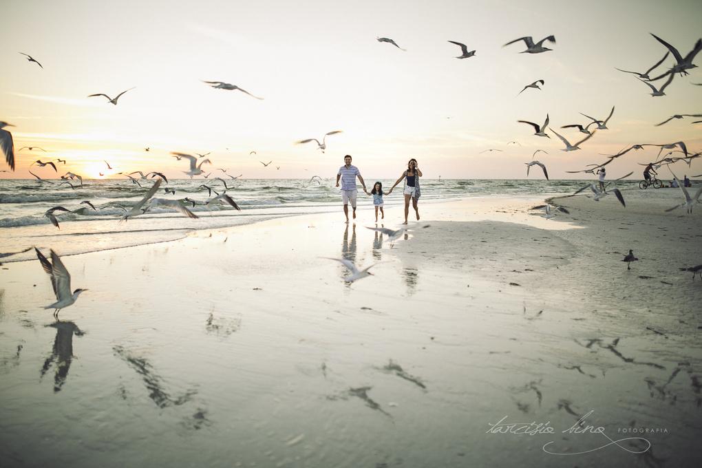 Sunset, beach and birds by Tarcisio Bino