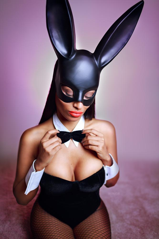 Tuxedo bunny by socreative photography