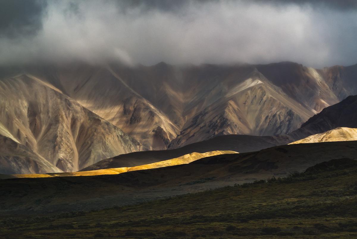 Denali Foothills by Tom Egel