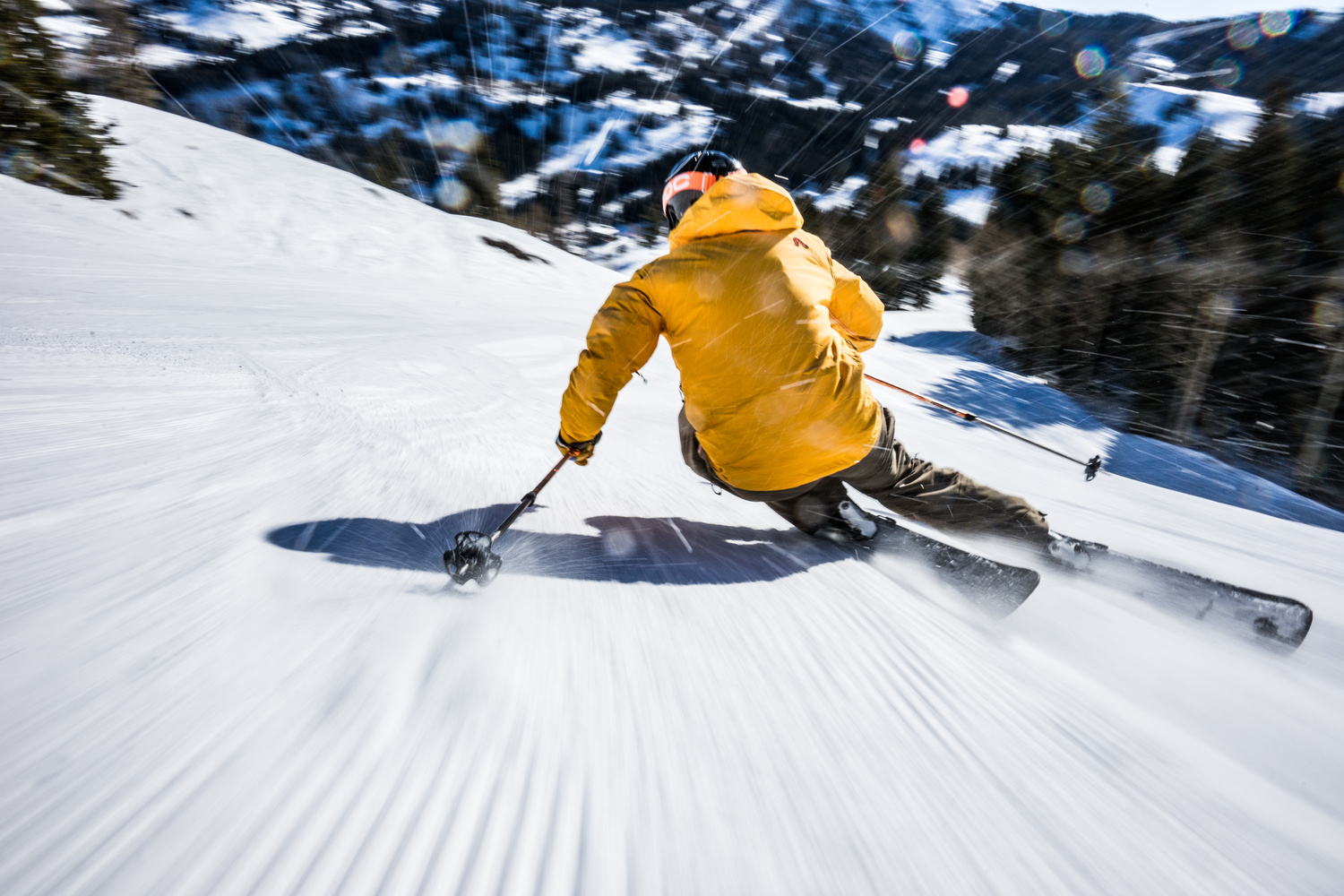 Ski for Speed by Cam McLeod