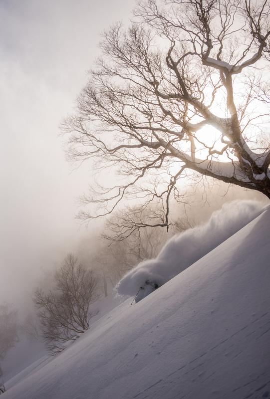 Skier in Japan by Cam McLeod