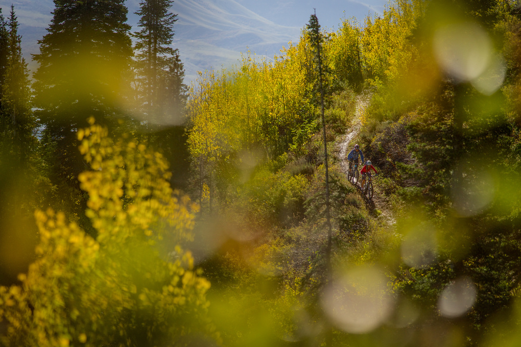 Fall mountain biking by Cam McLeod