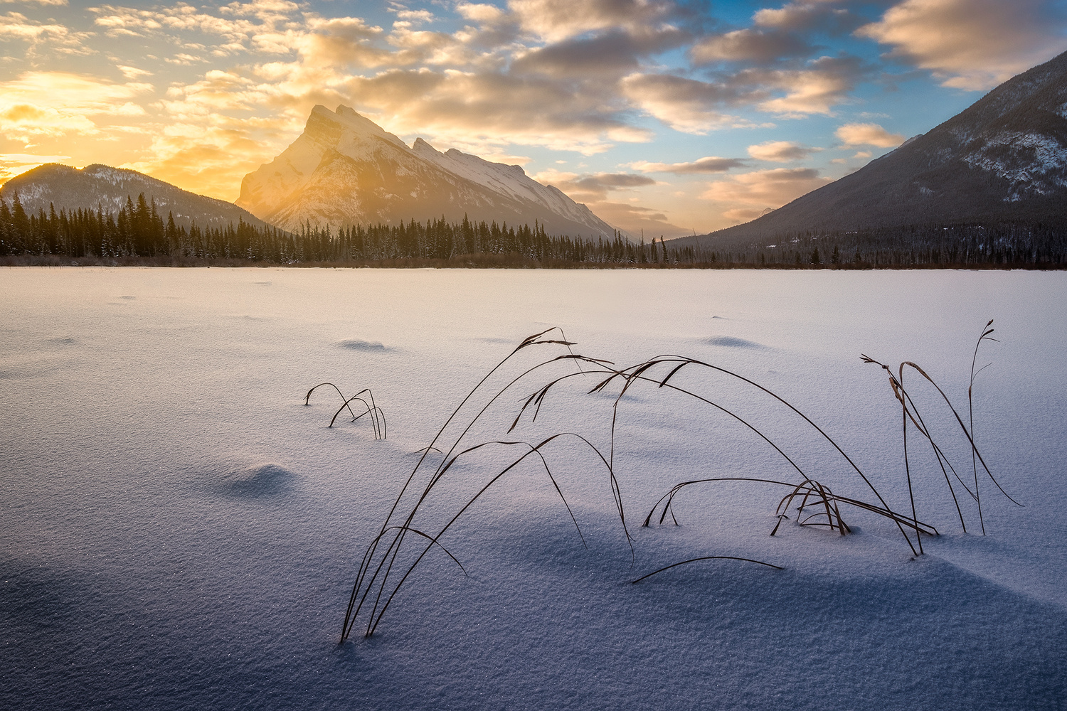 The frozen lake by Anthony Robin