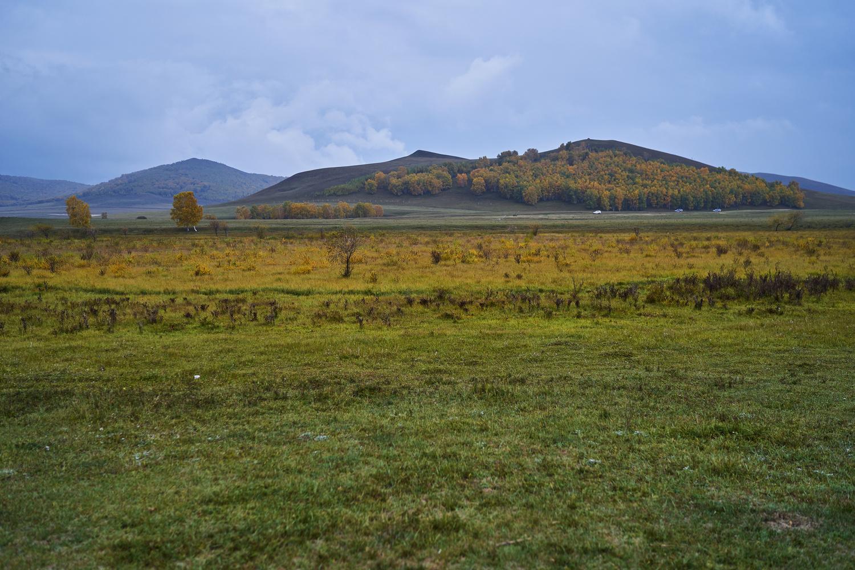 Cloudy Grassland by MK. Wong