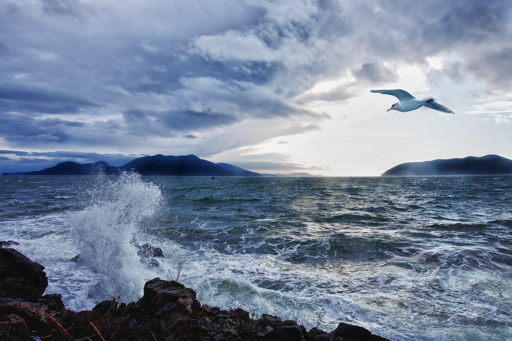 Orcas Island Storm by Patrick Shipstad