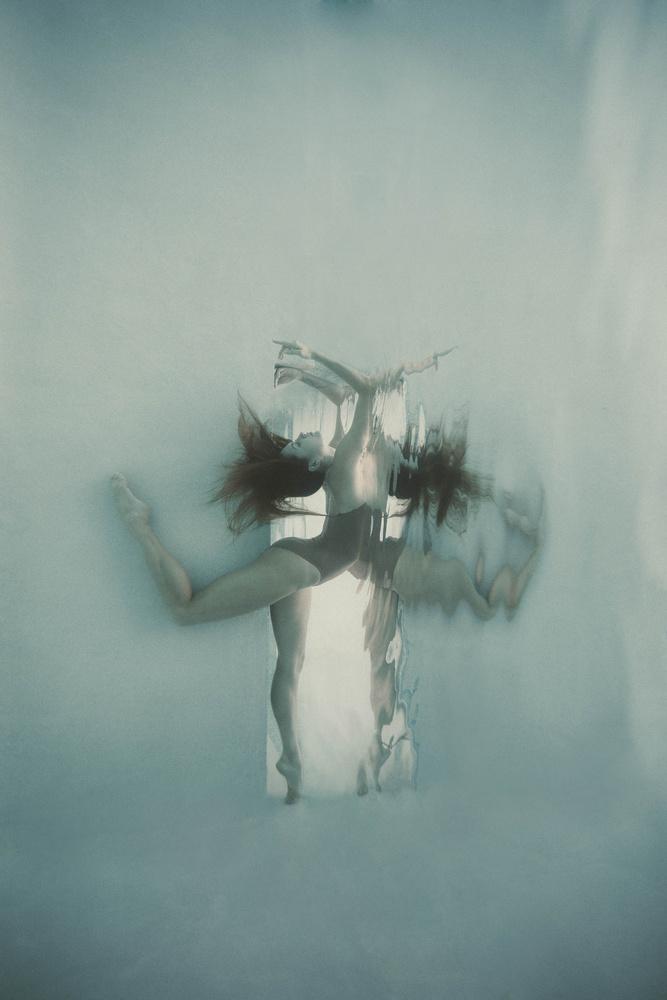Fly by Romi Burianova