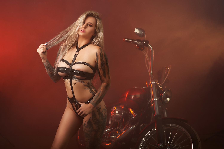 Harley by Bill Larkin