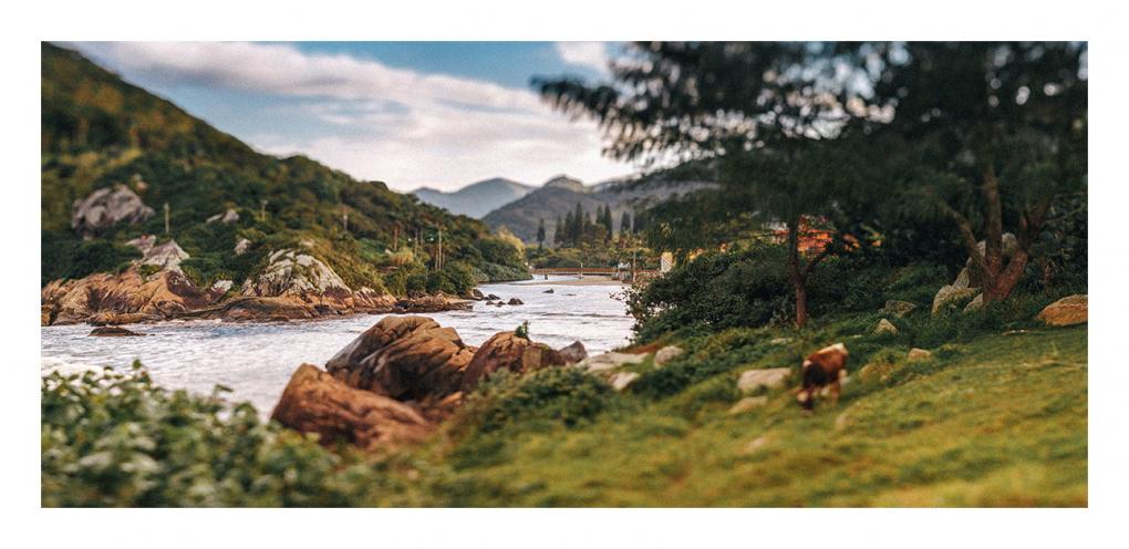 Course of the River by Rafael Ribeiro