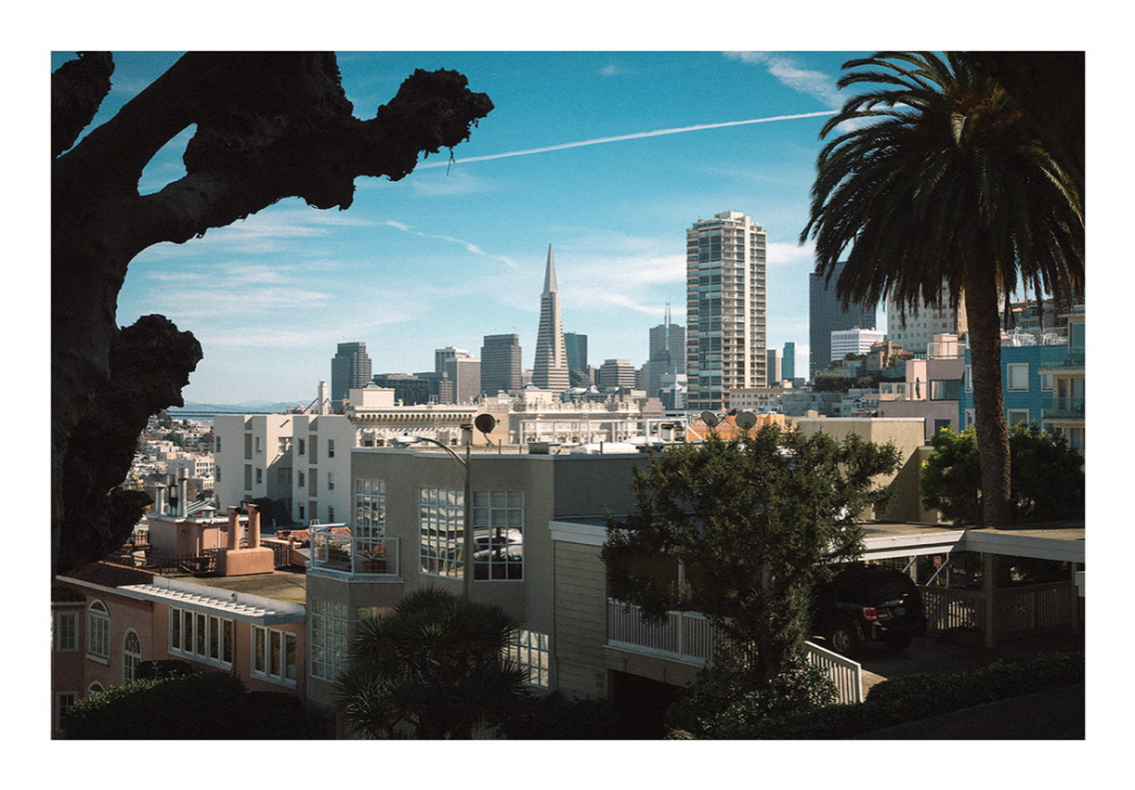 San Francisco by Rafael Ribeiro