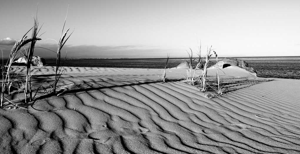 Sandscape by Gareth Earl Roberts