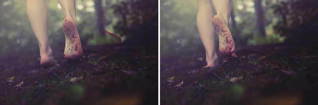 Grounding by Haley Birt