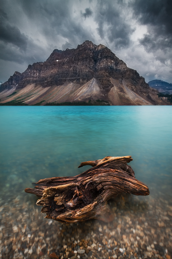Bow Lake by Crystal Provencher
