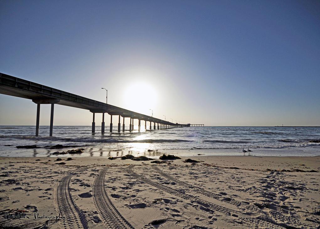OB Pier by Ted Litke