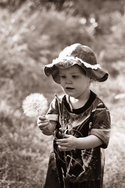 Make a Wish by Tara Teite