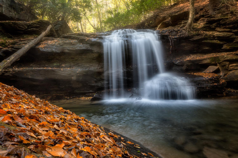 Jonathan Falls by Mark Bowers