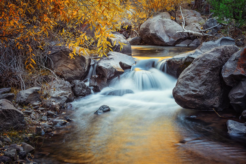 Pine Valley by Rex Jones