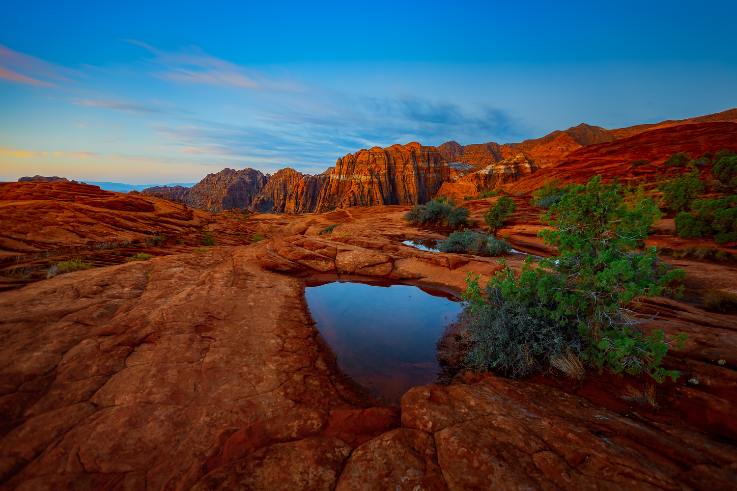 Snow Canyon Dawn by Rex Jones