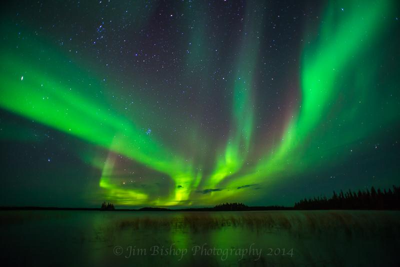 Aurora by Jim Bishop
