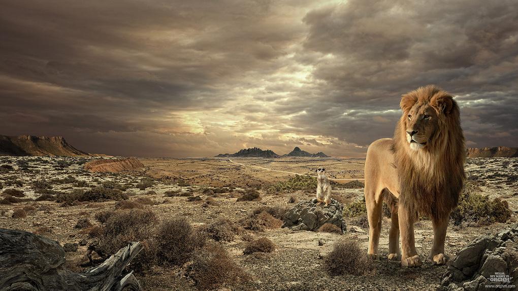 AFRICAN TALES by Dusan Holovej