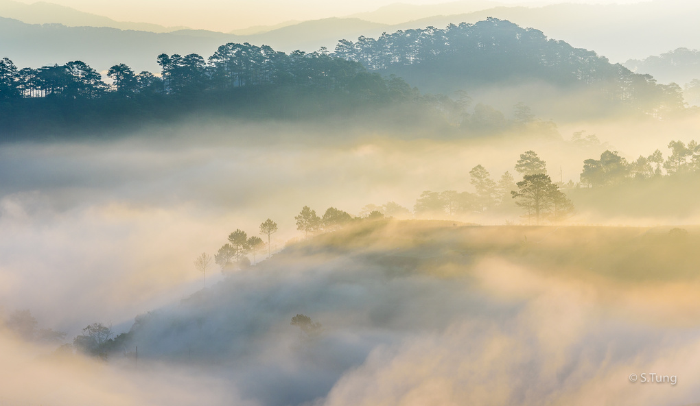 Wave of mist by Michel Nguyen