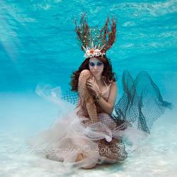 Underwater Coral Beauty... by Jackie Arias