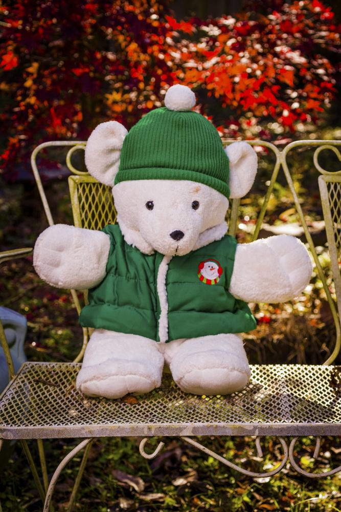 My Friend Teddy by Archie Plump