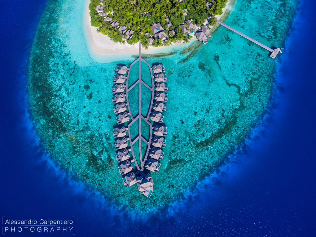 Paradise from Above by Alessandro Carpentiero